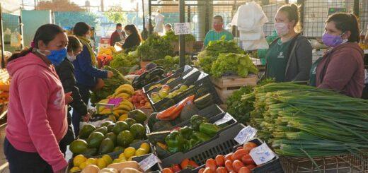 El Mercado Concentrador de Posadas se suma al 9 de Julio con renovadas ofertas para la mesa familiar: Mirá los increibles precios