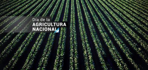 ¿Por qué se conmemora hoy el Día de la Agricultura Nacional?
