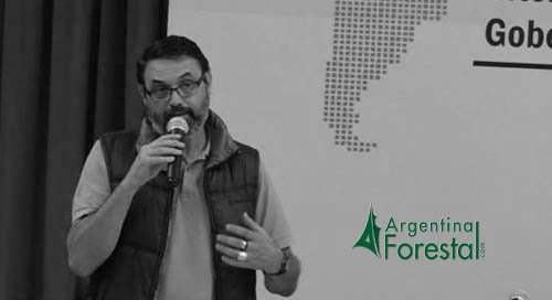 Juan Pablo Cinto: «La restauración forestal resulta un componente fundamental de la conservación y del uso sustentable de nuestros bosques»