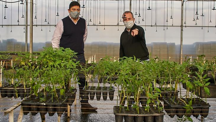Biofábrica y el IFAI acuerdan trabajo conjunto para la producción de alimentos