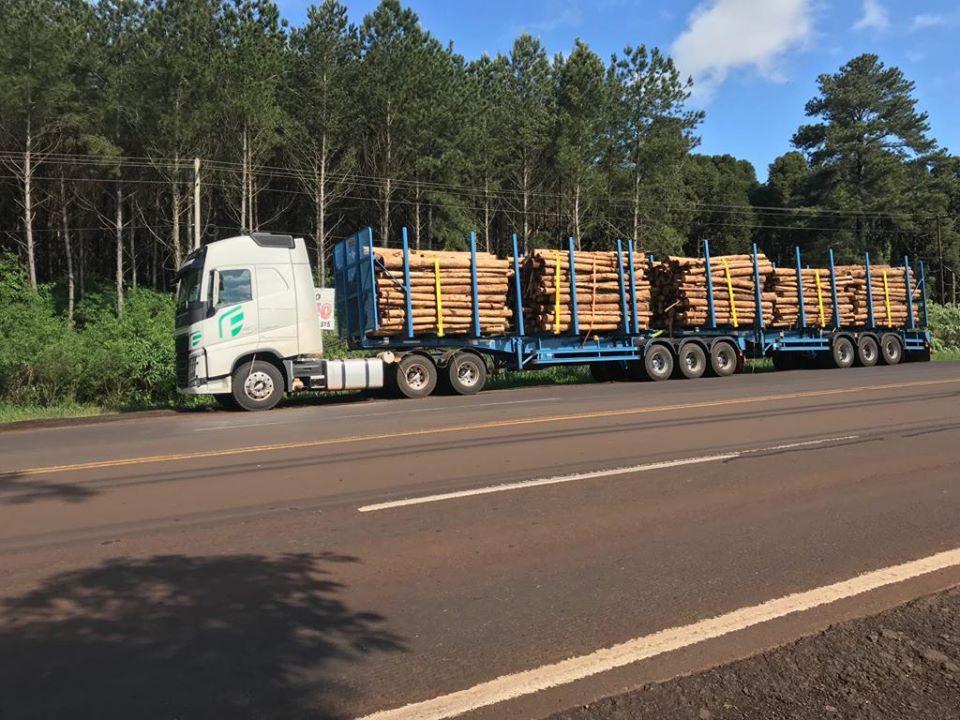 Misiones: sorpresiva medida de fuerza de choferes de bitrenes del Sindicato de Camioneros frente a los accesos de las plantas de Arauco en Piray y Esperanza