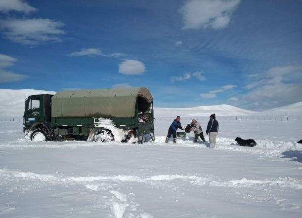 歴史的な降雪と孤立した農村地域からの助けを切望するアルゼンチンパタゴニア、電力、水、食料の不足なし