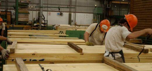 El despegue de la construcción y un aumento de las exportaciones dispararon la demanda de madera en Misiones