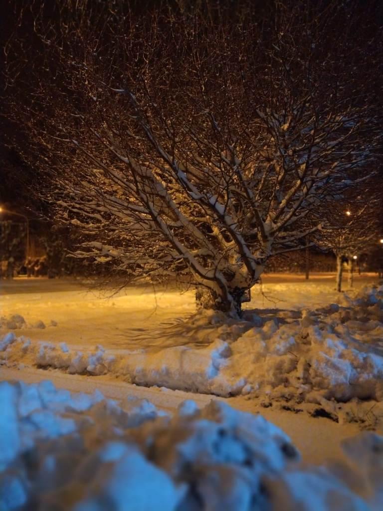 歴史的な降雪と孤立した農村地域からの助けを切望するアルゼンチンのパタゴニア、電力、水、食料の不足なし