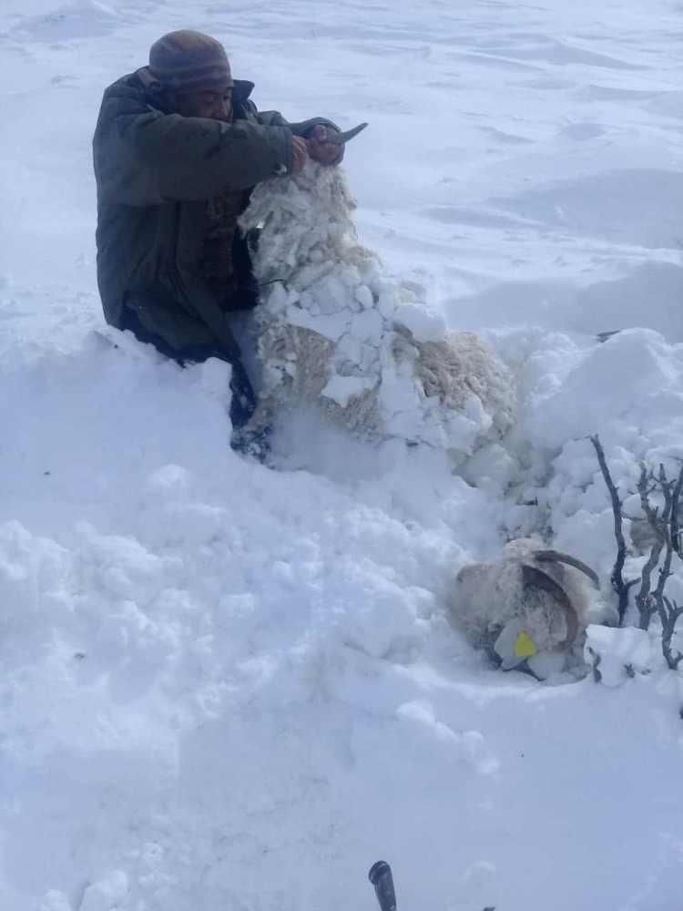 歴史的な降雪と孤立した農村地域からの助けを求める絶望的な需要があり、電力、水、食料の不足がないアルゼンチンパタゴニア