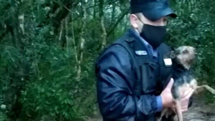 """""""El agua nos llegaba hasta la cintura, pero estábamos felices porque rescatamos al perro"""": el relato de un policía tras el heroico rescate en una inundación en Caá Yarí"""