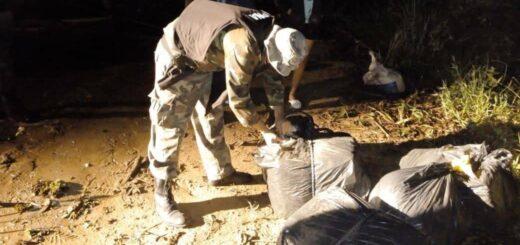 Santa Ana: Prefectura secuestró casi 40 kilos de marihuana escondidos en camperas