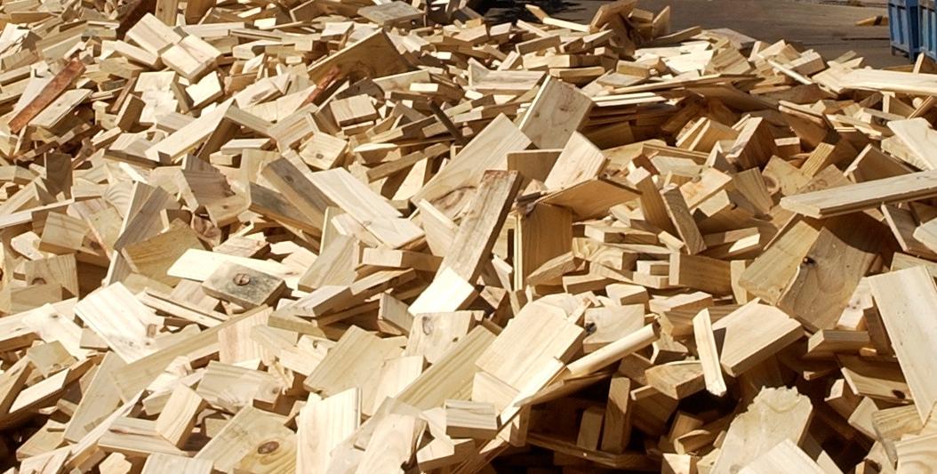 Pellets de madera en Misiones: avanzan en un proyecto industrial de energía a partir de la biomasa en Concepción de la Sierra