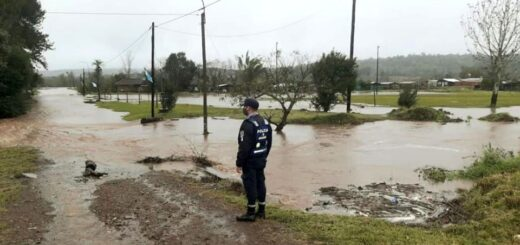 Leandro N. Alem reportó desbordes de arroyos, evacuaciones y rescates de animales por las intensas lluvias