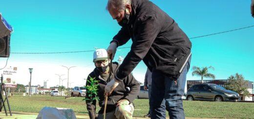 Stelatto participó de la plantación de 70 árboles nativos en la Bahía El Brete