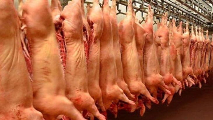 Avanzan las conversaciones sobre el proyecto de producción de carne porcina de inversión mixta entre China y Argentina