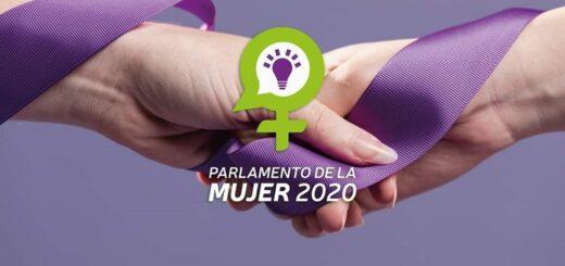 Posadas: este jueves se realizará la sesión final del Parlamento de la Mujer 2020