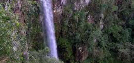 Turismo: lo primero que se habilitaría en Misiones serán los parques para pasar el día pero sin la posibilidad de pernoctar en alojamientos