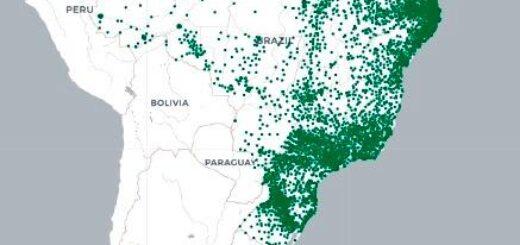 Coronavirus en Brasil: Foz de Iguazú registra casi 2.500 casos positivos y 23 fallecidos