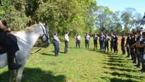 Seguridad: bandas dedicadas al robo de ganado y de yerba mate, y compradores de materia prima obtenida de manera ilegal, en la mira de la flamante Policía rural