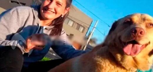 Santa Fe: vecinos le mataron las mascotas a una enfermera para que se fuera del barrio