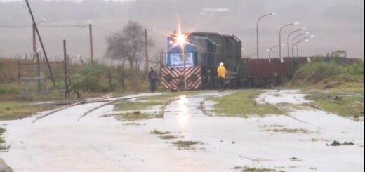 Arribó a Misiones el tren de cargas que conectará la estación de Garupá con la de Zárate