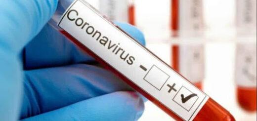 Coronavirus: Misiones, única provincia de Argentina sin casos activos confirmados de Covid-19