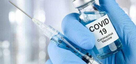 Coronavirus: un laboratorio de Estados Unidos anunció que su vacuna produjo anticuerpos que neutralizaron la enfermedad