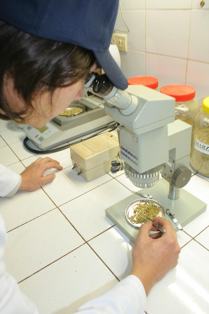 El INYM cumple 18 años de servicios al sector yerbatero