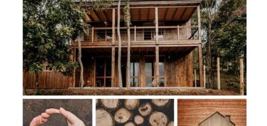 La madera: el material de construcción que mantiene sus propiedades durante siglos