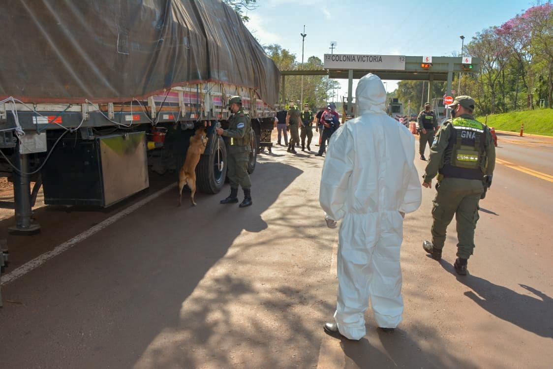 Gendarmería incautó más de 760 kilogramos de marihuana que era transportada en un camión brasileño