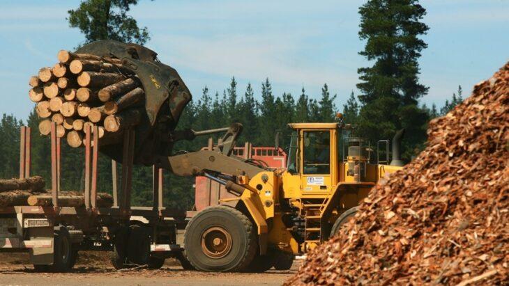 El presidente de APICOFOM destacó que el sector foresto industrial está duplicando la venta en el mercado interno
