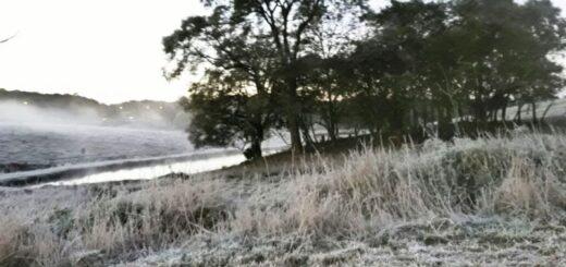 La ola polar más fuerte del año se acerca a Misiones y para el viernes se esperan 3 grados bajo cero de sensación térmica