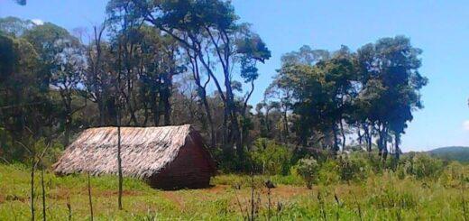 """Mbya Guaraní se unieron en un manifiesto para solicitar que """"retiren"""" el proyecto que propone declarar """"Patrimonio Cultural Inmaterial"""" a la lengua indígena: """"No fuimos consultados previamente"""""""