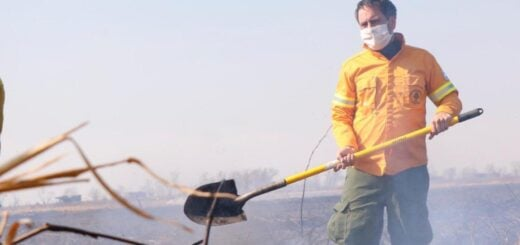 Tragedia ambiental por las quemas rurales en el Delta del Paraná que afecta humedales en Entre Ríos y Santa Fe: Cabandié trabajó en áreas afectadas y pidió celeridad en la actuación de la Justicia