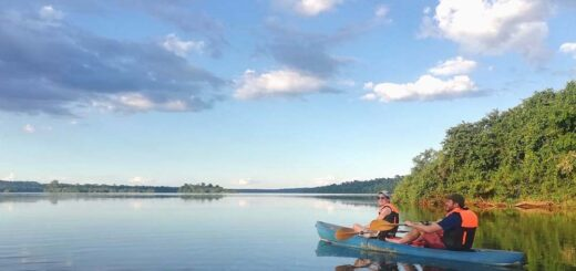 """Últimos días para participar del Concurso """"Un viaje a la Selva Misionera"""": ganá una estadía gratis en un lodge sobre la costa del río Iguazú"""
