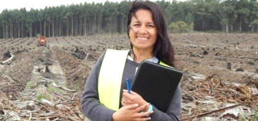 Ingenieras Forestales: mujeres capaces, audaces y comprometidas con la sustentabilidad