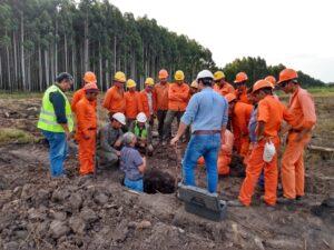 """Ingenieras forestales analizaron los desafíos de la comunicación del sector foresto-industrial entre los propios actores y en relación a la comunidad: """"Falta calidad, eficacia, y entender los nuevos canales de llegada a la gente"""""""