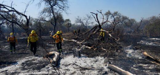 Chaco: combatieron un incendio forestal que afectó cerca de 4 mil hectáreas del Parque Nacional El Impenetrable y se mantiene el alerta crítico por riesgos de nuevos focos ante la sequía