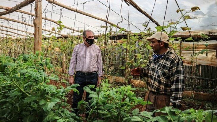 La Municipalidad de Posadas acompaña el trabajo de los productores urbanos