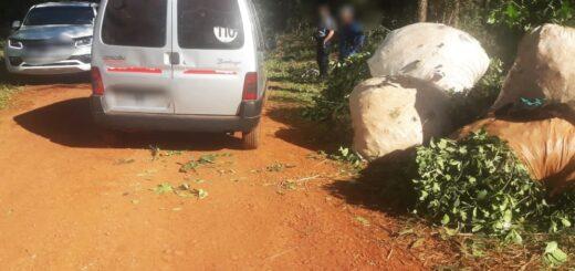 La Policía recuperó tres toneladas de yerba mate robada y hay cuatro detenidos