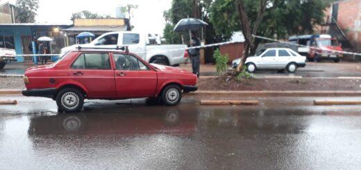 Un sexagenario murió mientras conducía un auto que chocó contra un árbol en Posadas
