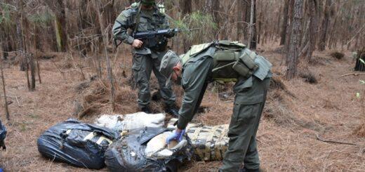 Gendarmería secuestró más de  73 kilos de marihuana en Ituzaingó