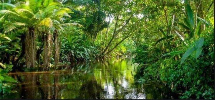Visit 7 Wonders: el turismo de vida silvestre busca apoyo financiero