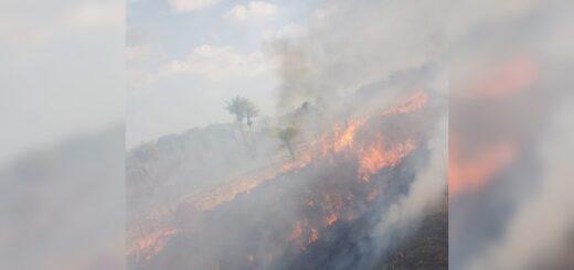 Bomberos sofocaron un incendio que consumió 6 hectáreas de maleza en Loreto
