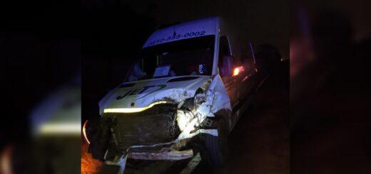 Hubo dos accidentes de tránsito en la ruta 12 con animales este fin de semana en Misiones