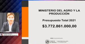 """Presupuesto 2021: """"Promover el arraigo rural con herramientas para industrializar la producción primaria"""", los grandes desafíos de Oriozabala"""