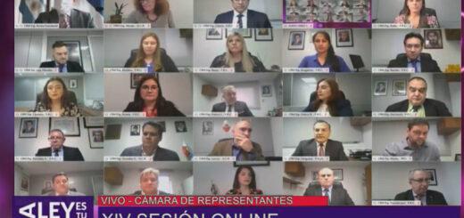 VIVO: Diputados misioneros sesionan en el Parlamento virtual