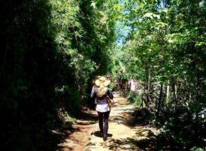 Positivo fin de semana para el turismo interno en Misiones