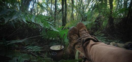 Cinco días en Yabotí: Sergio Moya compartió sus nuevas experiencias en una producción audiovisual que busca crear conciencia sobre la importancia de la conservación de la biodiversidad en Misiones