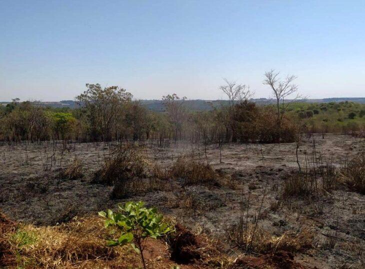 """Diego Ciarmiello sobre la reserva municipal Monte Seguín: """"Los incendios y la usurpación son amenazas para la conservación del ecosistema de los bosques ribereños, y van 11 años de desidia en el cuidado ambiental del área"""""""