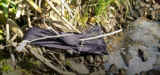 Adolescente desaparecido en San José