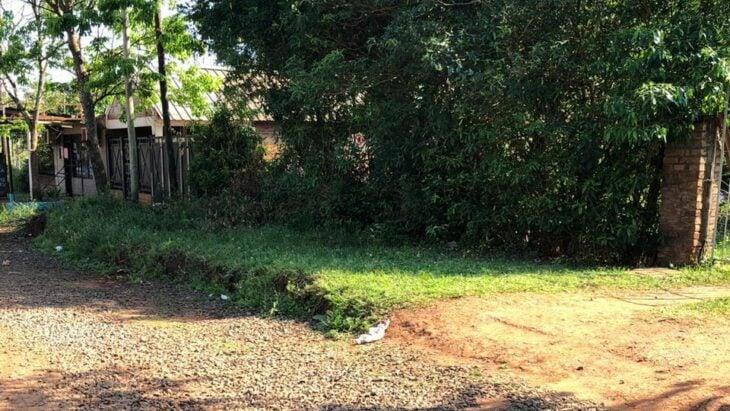 El escribano denunciado por estafa en la venta de un terreno dice que actuó conforme a derecho