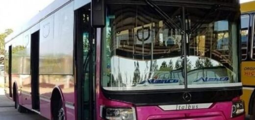 Línea 145 ex línea 141: Denunciaron a una empresa del Grupo Zbikoski por circular sin SUBE en Buenos Aires y exponer a sus pasajeros a contagios de coronavirus