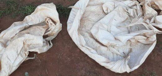 Los atraparon cuando estaban a punto de robar raídos de yerba en Concepción de la Sierra